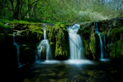 Lathkill-Waterfall-One