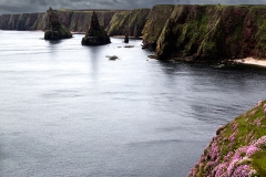 Duncansby2