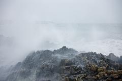 Wild-Waves-1-WEB
