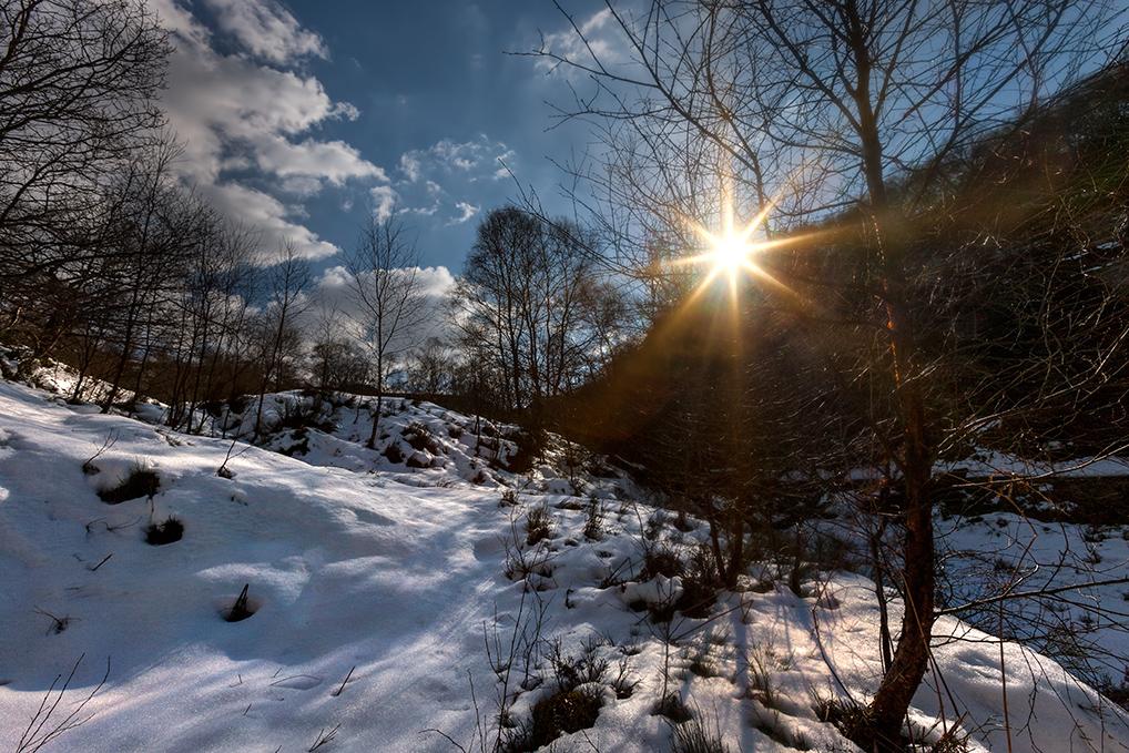 Blacks-Snow