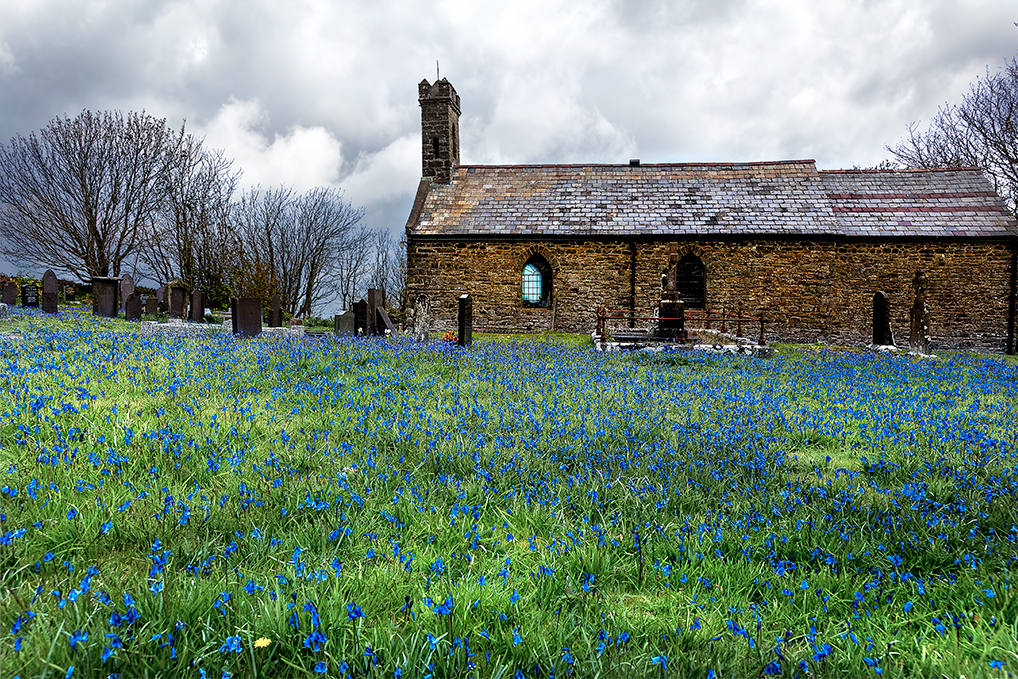 Church-Bluebells-2-sky