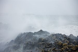 Wild-Waves-1-WEB.jpg