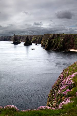 Duncansby2.jpg