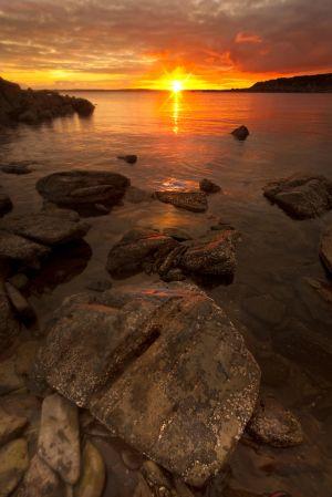 Mossyard-Sunset-Portrait-WEB.jpg