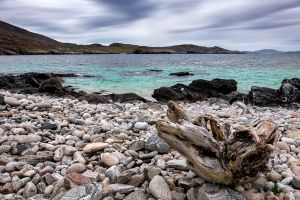 Vatersay Beach Stump