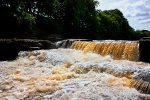 Aysgarth Full Force