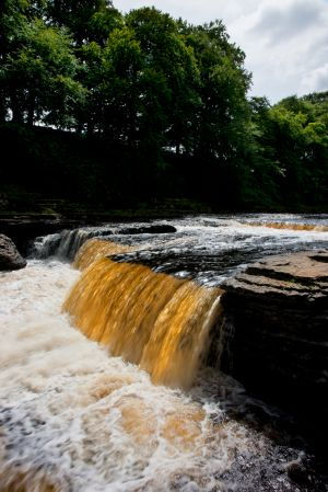 Aysgarth Golden Falls