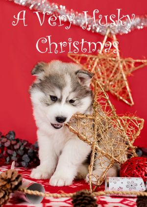 Husky-Christmas-Card-6.jpg